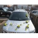 Décoration de voiture pour mariage: coeur et roses vert anis