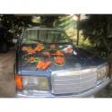 Decoration de voiture mariage orange et vert avec papillons