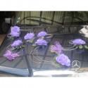 Composition de voiture de mariée thème parme, argent avec papillons