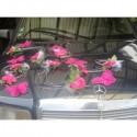 Composition de voiture pour mariage thème fuchsia avec orchidées