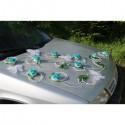 Décoration de voiture pour mariage thème turquoise avec papillons