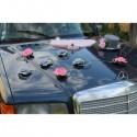 Décoration de voiture des mariées avec chapeau et voile rose, gris