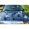 Décoration de voiture de mariage bleu royal thème papillon